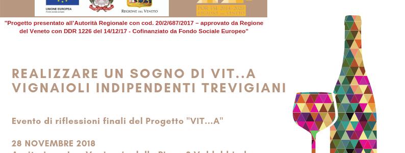 Realizzare un sogno di VIT..A – Vignaioli Indipendenti Trevigiani